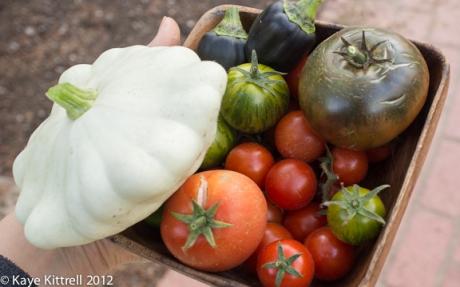 Yesterday's Harvest by Kaye Kittrell