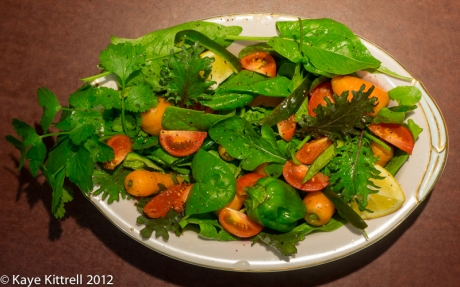 Red and Green Christmas Salad