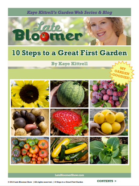 Kaye's Late Bloomer E-Book