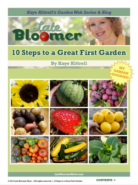 Kaye's Late Bloomer E-Book